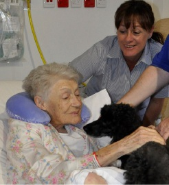 Nurse manager Kay Turner with Marian Lane and Lady.
