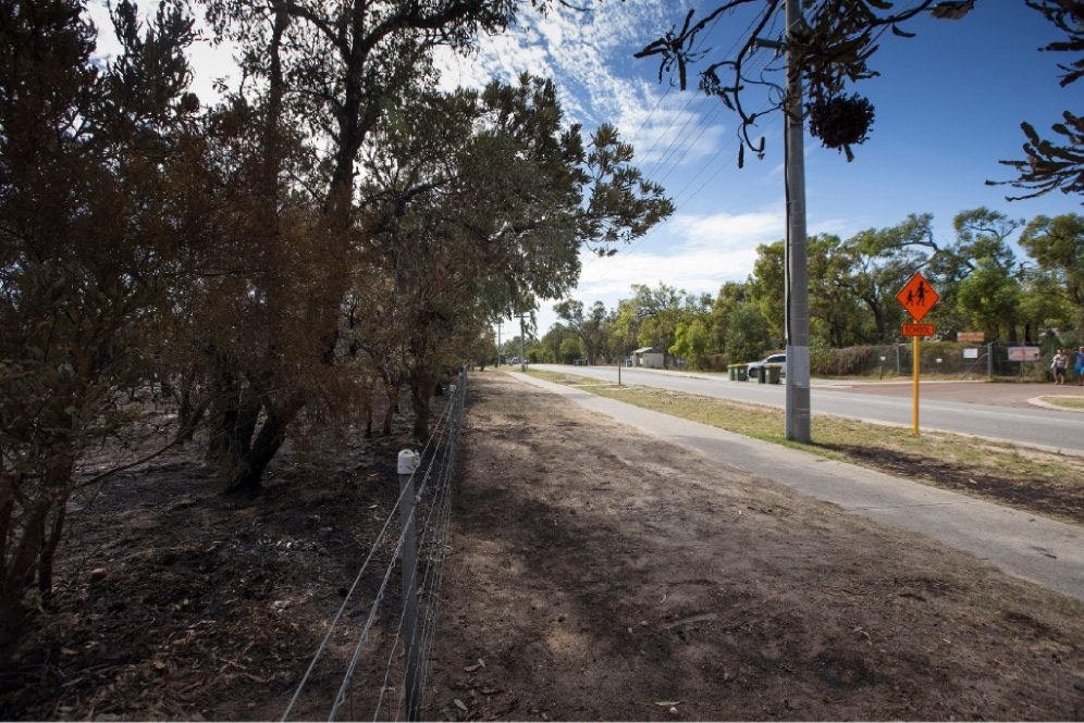 The aftermath of the fire at Beeliar Regional Park.  Picture: Will Russell    d450101