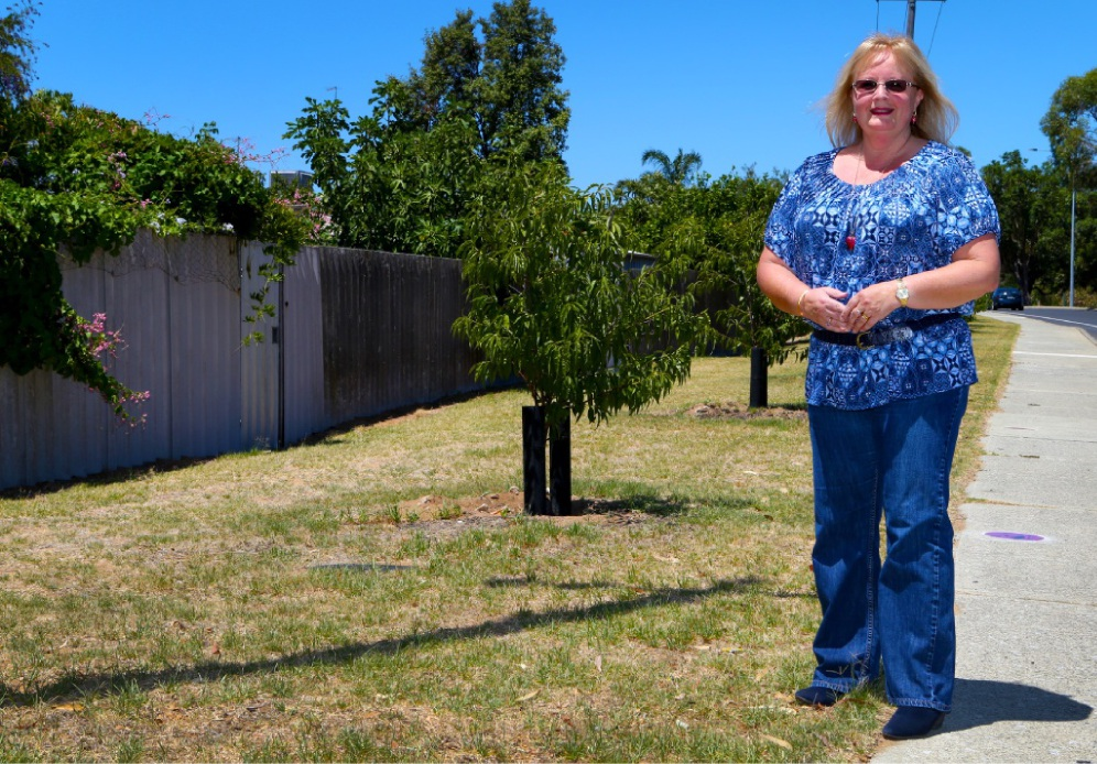 Deputy Mayor Carol Reeve-Fowkes. Picture: Matt Jelonek www.communitypix.com.au   d449719