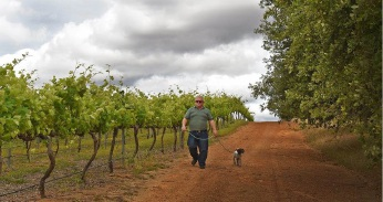 Bernie Worthington before the fires damaged his vineyard. The aftermath of the fire.