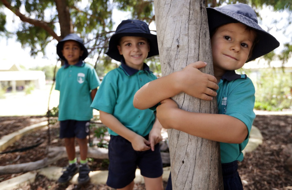 Landsdale Primary School pre-primary students Dhray Varsani, Joshua Kovacevich and Peter David-Moss. Picture: Martin Kennealey                d450026