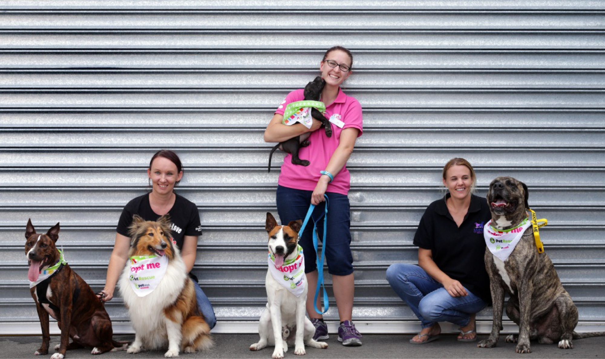 Anna Jozkowicz with Harry and Moya, Zoe Tunnadine with Benji and puppy Ray, and Megan Forrest with Rubin. Picture: Martin Kennealey        www.communitypix.com.au   d449049