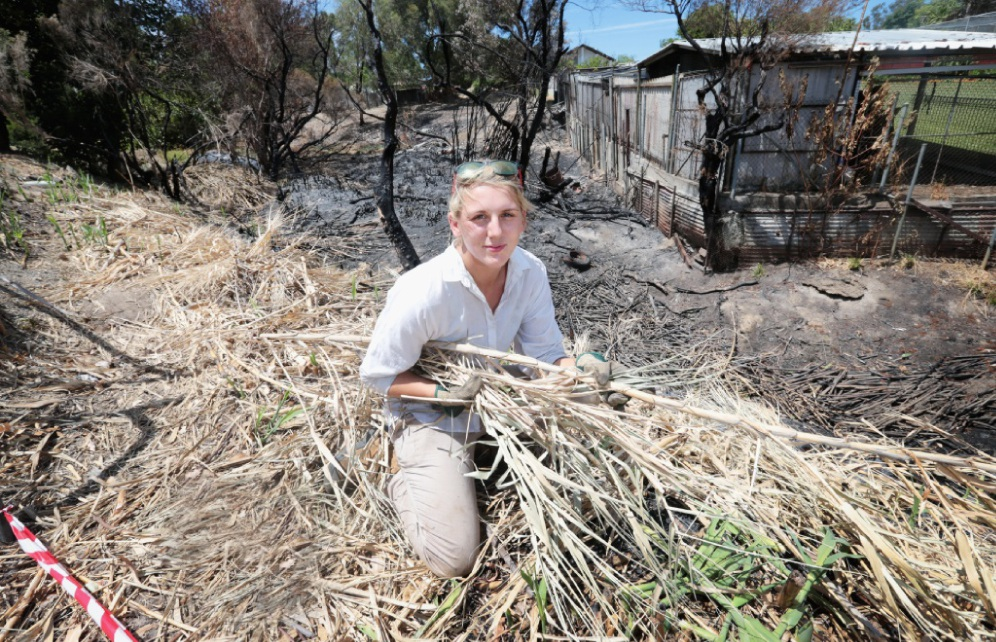 Fire from illegal flare destroys park homes