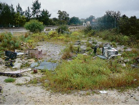 Illegal dumping costs the City of Canning about $50,000 a year to remove.