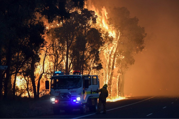 South West fire the worst in 50 years