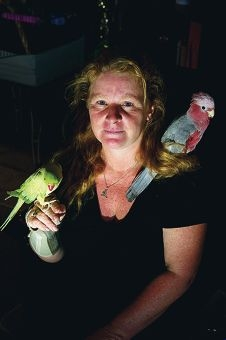 Andrea Marzi with Cheeky and Ace at Express Wildlife Rescue. www.communitypix.com.au d396774