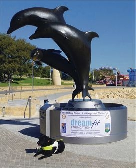 Bronze dolphins will spin for Dreamfit Foundation