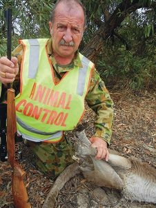 DEC animal control agent Paul Falconer-West with a badly burnt kangaroo.