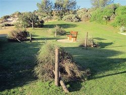 Damaged trees in the open space at Florida have outraged residents and frustrated a local property developer.