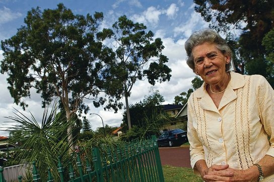 Pamela Hollings stands near the towering lemon gum tree she planted 50 years ago when her daughter was born.
