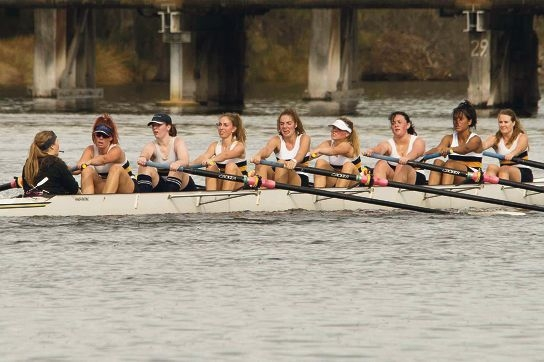Rowers impress at annual regatta