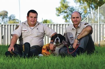 Rangers Bruce Bramwell and Steve Lippinkhof with Bruce the dog. Picture: Matthew Poon