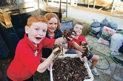 Cameron Bedford, Susan Taggart and Darcy Islip get ready to make compost. Picture: Emma Reeves d399776