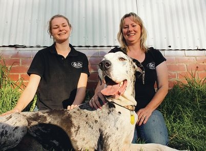 SAFE Avon Valley volunteers Gloria Robinson and Ellie Todd with Lou-Lou the Great Dane.