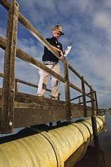 Kenneth Keesing, from CRREPA, stands above a large drain pipe at Shelley Park Beach. Picture: Matthew Poon d402336
