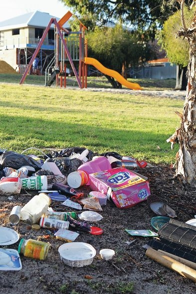 Rubbish dumped in Farnham Park in Bentley, at the intersection of Farnham Street and Hill View Terrace. Picture: David Baylis d404930