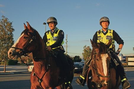 Reining in trouble-makers: Senior Constable Regan Simpson astride Big Ted and Senior Constable Patrick Burke on Padsip.