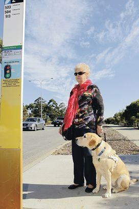 Murdoch resident Lorna Munns waits with Rinty at the bus stop. Picture: Martin Kennealey www.communitypix.com.au d402650