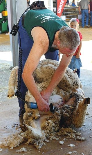 A record crowd attended the Golden Anniversary Dowerin Field Days for WA's best |display of agriculture. Shearing the rams proved popular.