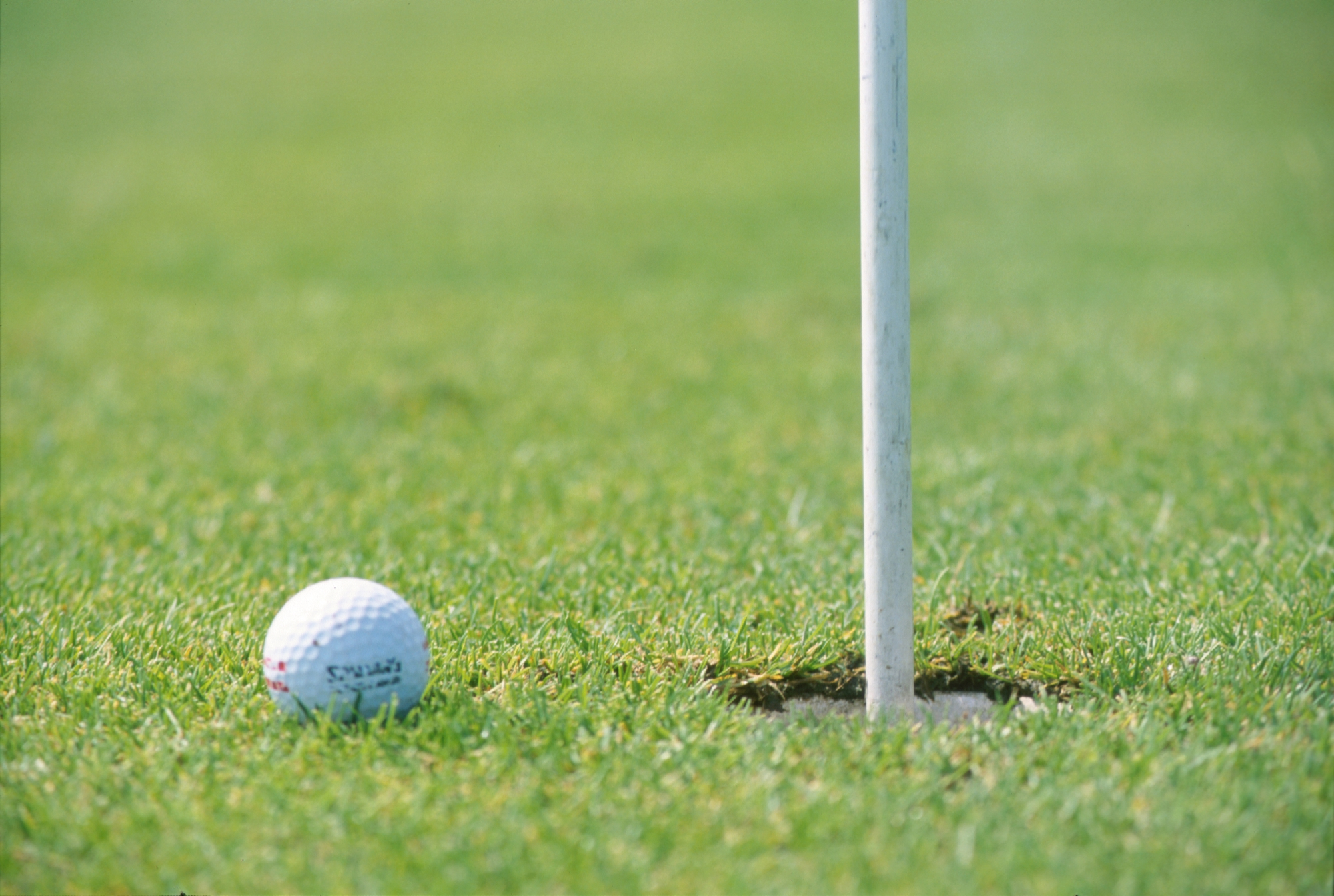 Research has been approved for development opportunities at Melville Glades Golf Course.