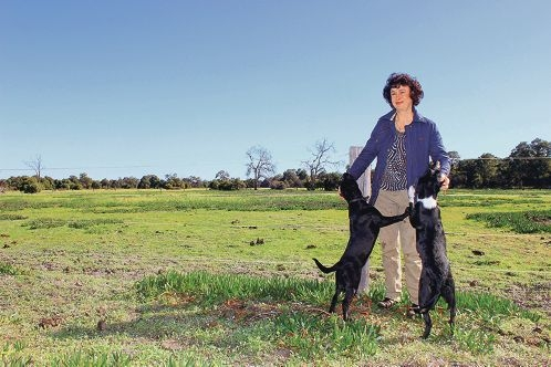 Frances Taylor at her Ellenbrook Stud Farm in Bullsbrook, which will be dissected by the Perth-Darwin Highway.