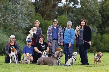 Some owners with their entries are Marion Aitken, Jacob Lear (11), Teresa Smith, Sharon MacBeth, Gary Carter, Gloria Davidson and Kylie Fielden. Picture: Elle Borgward www.communitypix.com.au d421798
