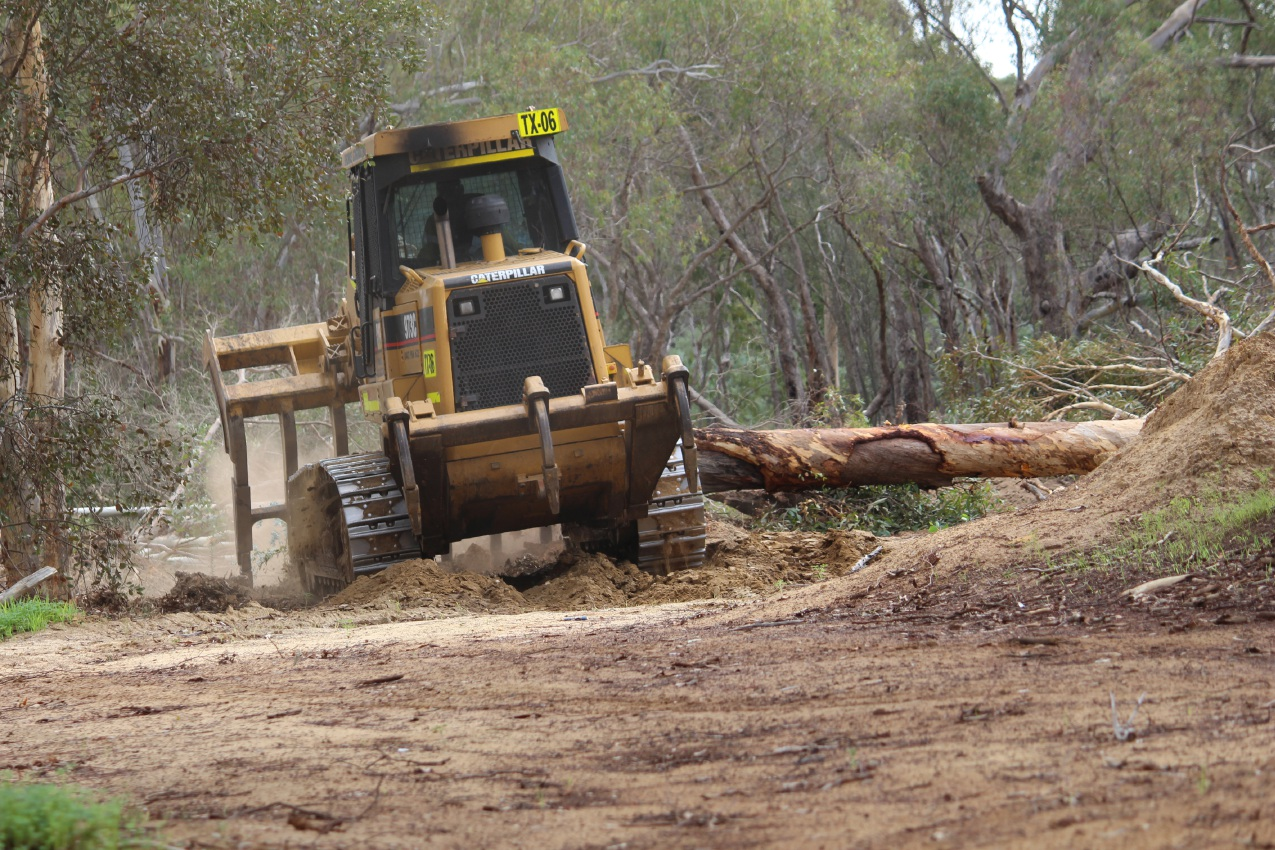 The bulldozer clearing trees on Friday.