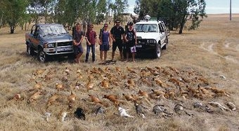 Some of the bounty from last year's Northam-Cunderdin Red Card for Rabbits and Foxes weekend.