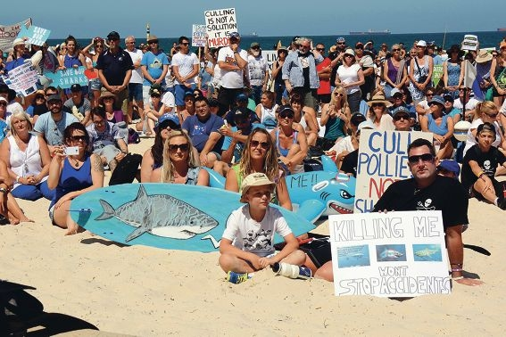 People came from across Perth to protest the shark culling.