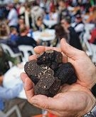 There will be no Mundaring Truffle Festival in 2014.