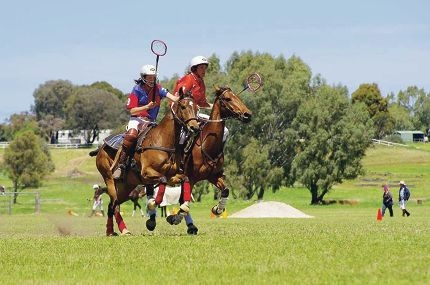 Some of the action from the State Polocrosse Championships at Brigadoon last weekend.
