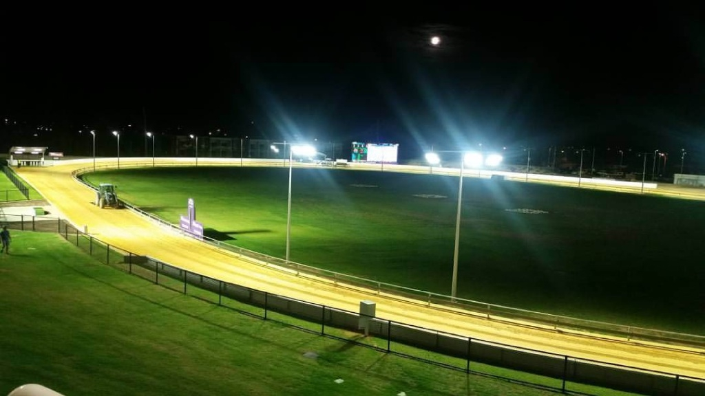 Opinion: NSW ban on greyhound racing doesn't solve real issue