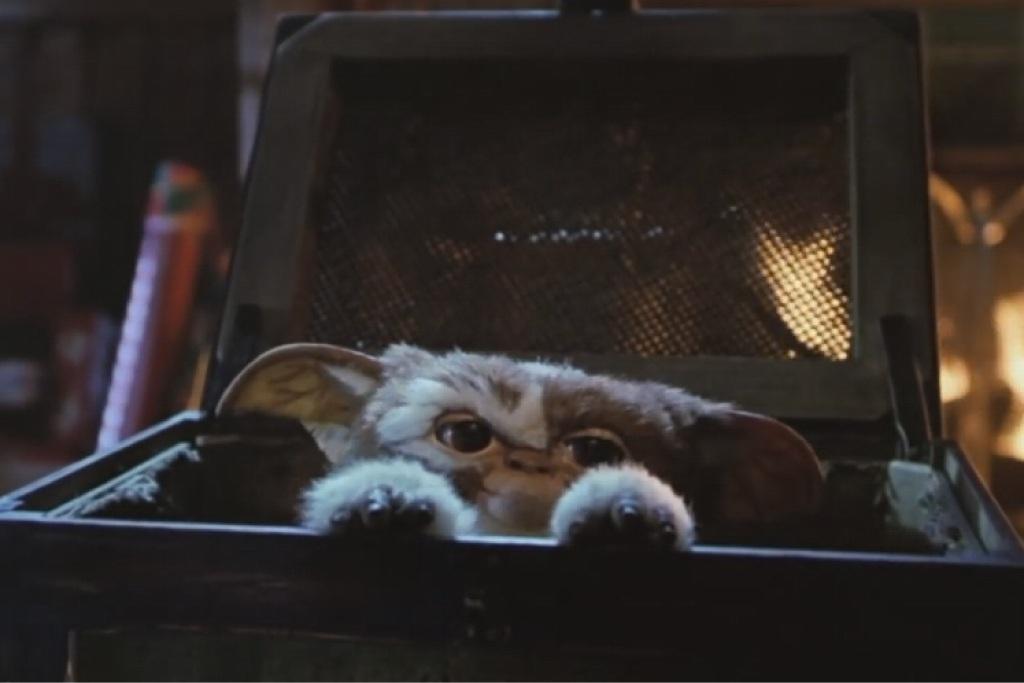 Cute and cuddly Mogwai in 1984 film Gremlins.