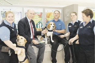 Quarantine detector dogs and officers with Agriculture and Food Minister Ken Baston at Perth domestic airport.