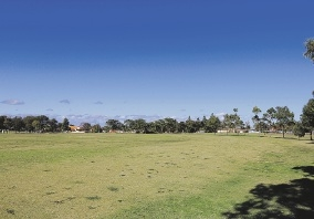 Bayview Reserve favoured to be site of off-leash dog park