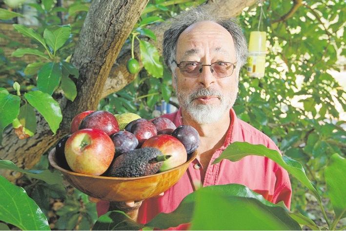 Hills grower Ian Burns. Picture: Bruce Hunt