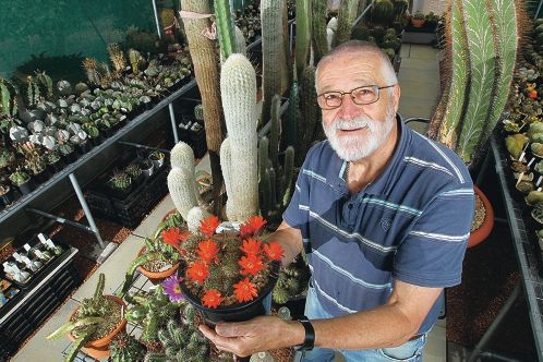 Plants put to test in show