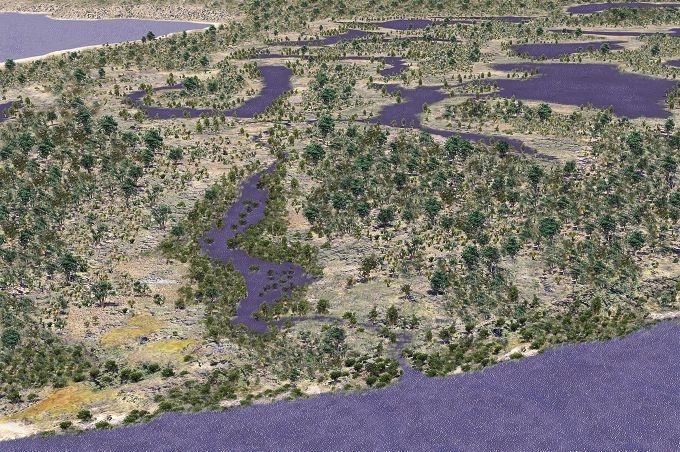 swampy Wetlands seen in 3-d
