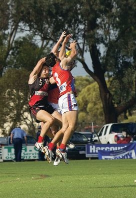 Falcons fly high further afield