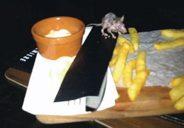 A picture posted last week of a rat inside Hoyts cinema complex at Carousel shopping centre. Picture: Facebook