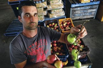 Fruit grower Anthony Caccetta from Roleystone. Picture: Marcelo Palacios d397966