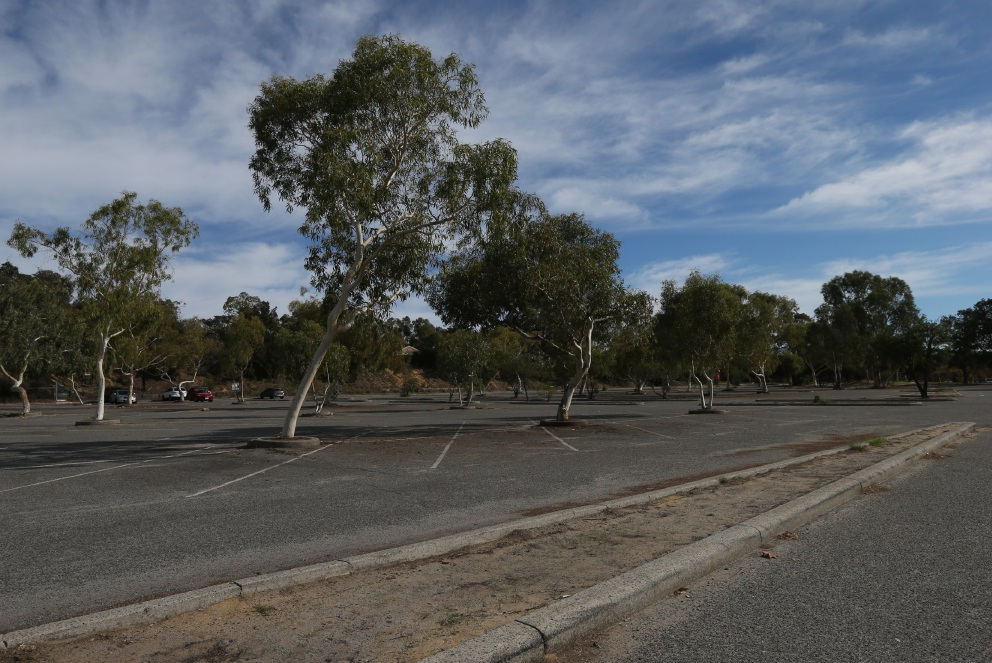 The Adventure World carpark is set for an upgrade after the theme park agreed to pay for it. Picture: Matt Jelonek d453134