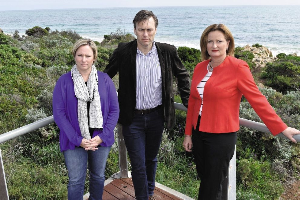 Safety officer Belinda Trowbridge, Community and Social Development manager Tim Hartland and Mayor Marina Vergone at a fence where wire balustrading has been stolen.