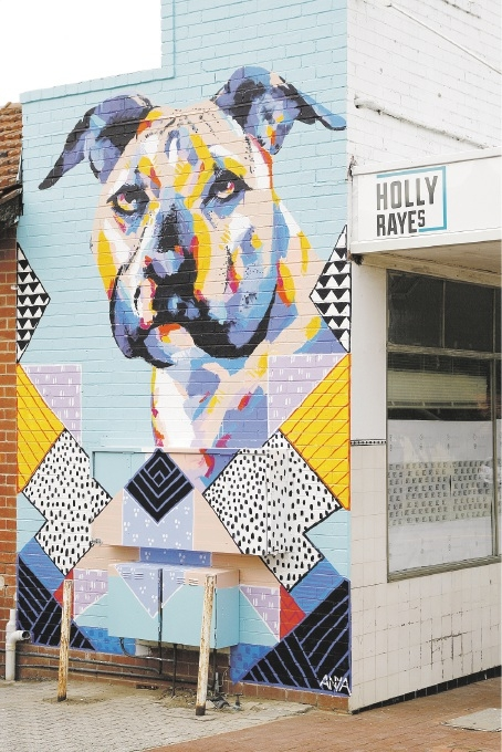 The new mural at Holly Raye's.Picture: Marie Nirme     d442817