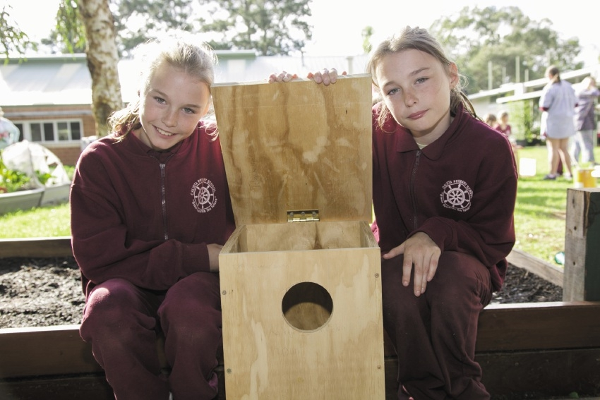 Former Calista Primary School students Telea and twin sister Katelyn with a possum box made using funds from previous rounds of the Community Partnership Program.