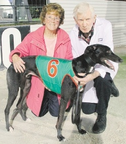 The Chase heat winner Magnifico with trainer Darryl Neilsen and Albert Neilsen.