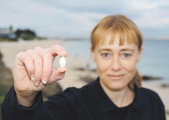 Fish ear bones provide important information for herring researcher Kim Smith.