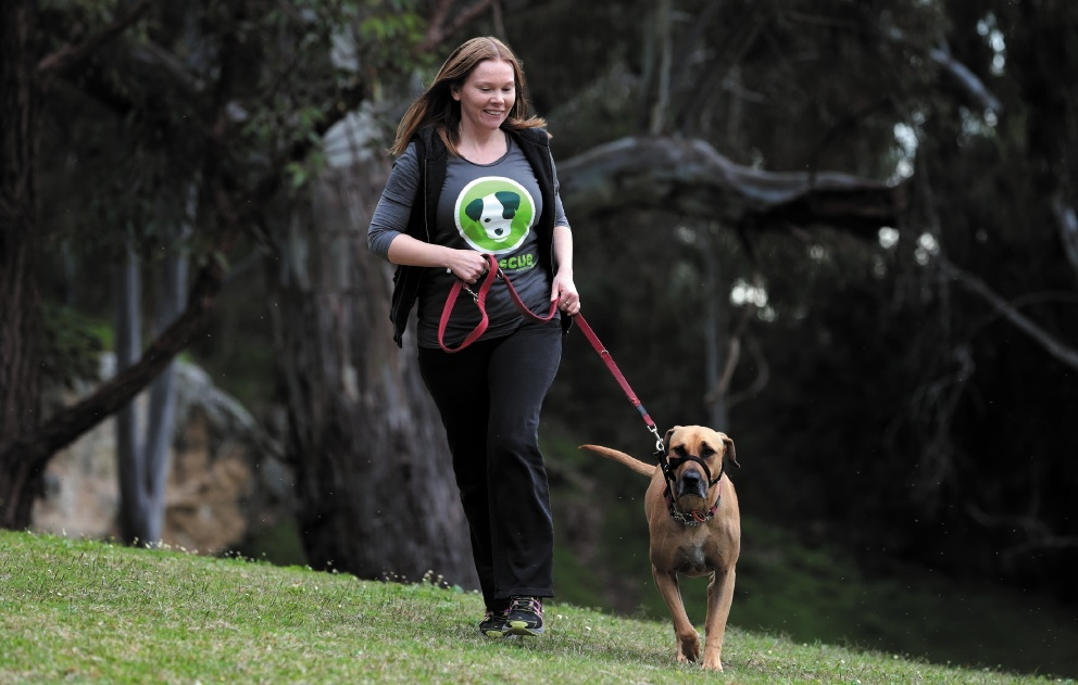 Jo Baker with her dog Maddie. Picture: Martin Kennealey    d442092