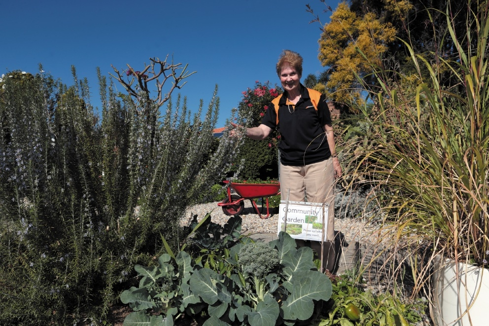 Marie Hahn and the garden on her front verge. Picture: Martin Kennealey        www.communitypix.com.au   d439998