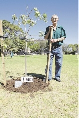 Roy Kerr with his tree.